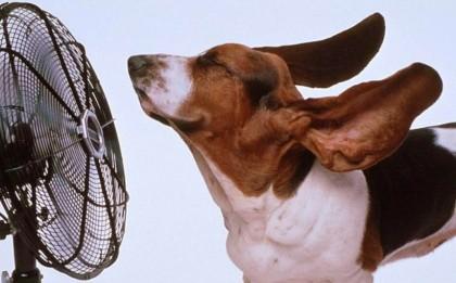 Как сделать вентиляцию в каркасном доме своими