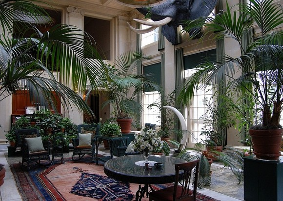 В этом может помочь уютный и живописный зимний сад, который представляет собой архитектурную конструкцию.