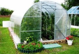 теплицы — защита экологии в рамках садового участка