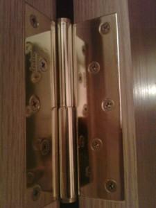 Embedded in the door hinges