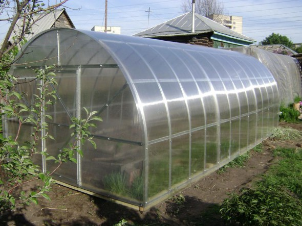 Greenhouses Polycarbonate