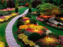 Ландшафтный дизайн – философия Вашего сада