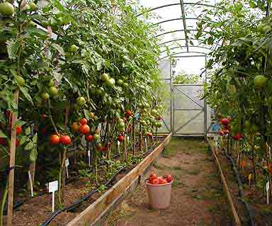 heating for greenhouses