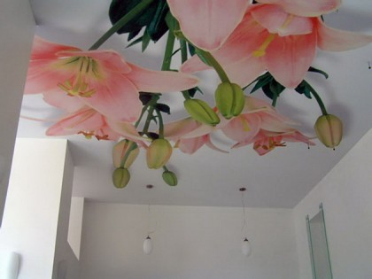 photo printing on the ceiling