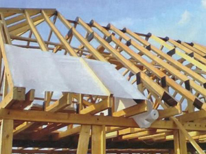pitched roof2